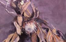 Dried Proteas