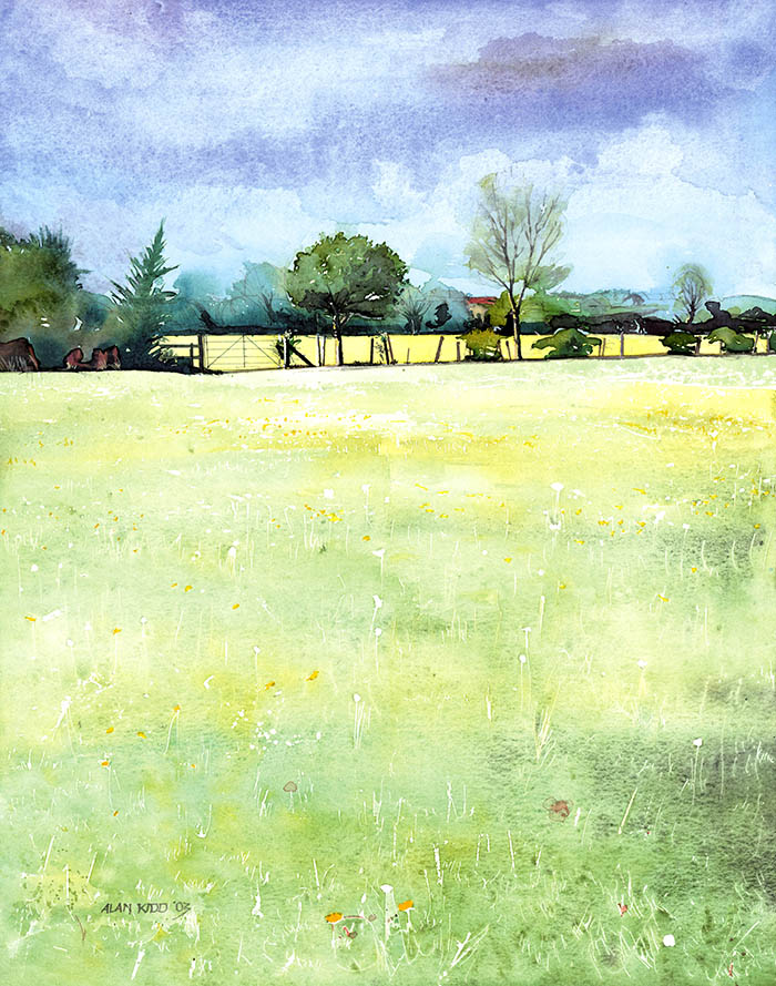 Light Green Field_700
